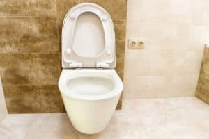 High End Toilets Reviews