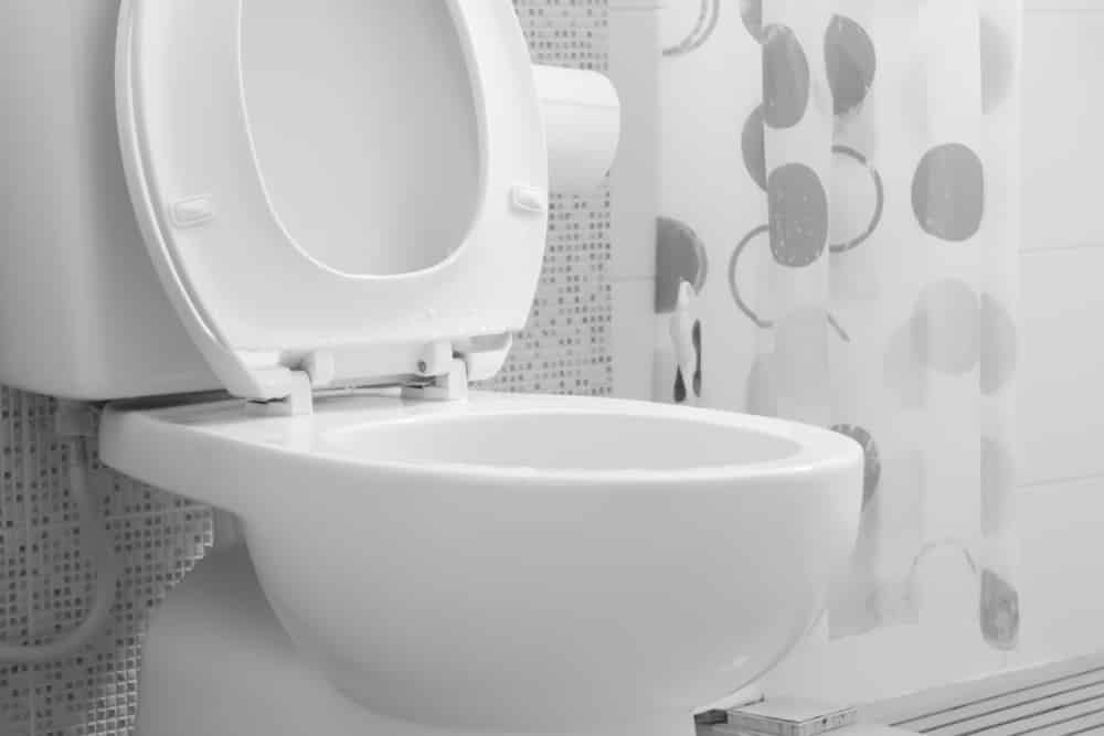 9 Great Round Bowl Toilets Reviews For 2018