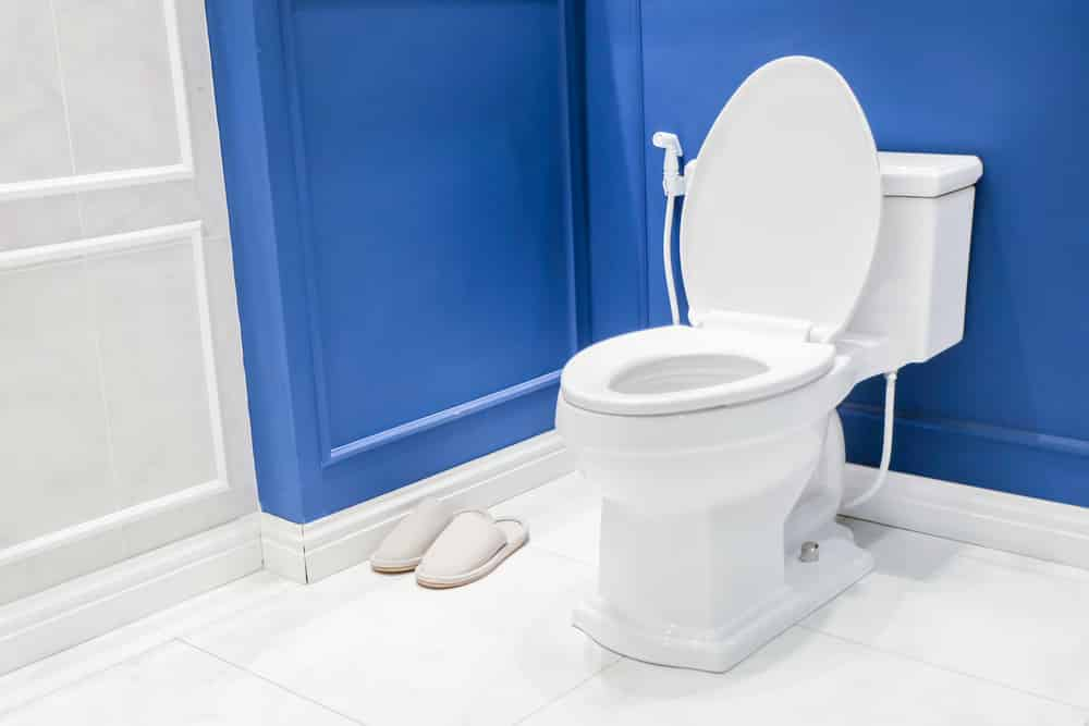Toto Ms964214cefg 01 Eco Soiree Elongated One Piece Toilet