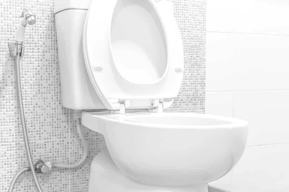 What Kind of Toilet Bowl Should You Go For