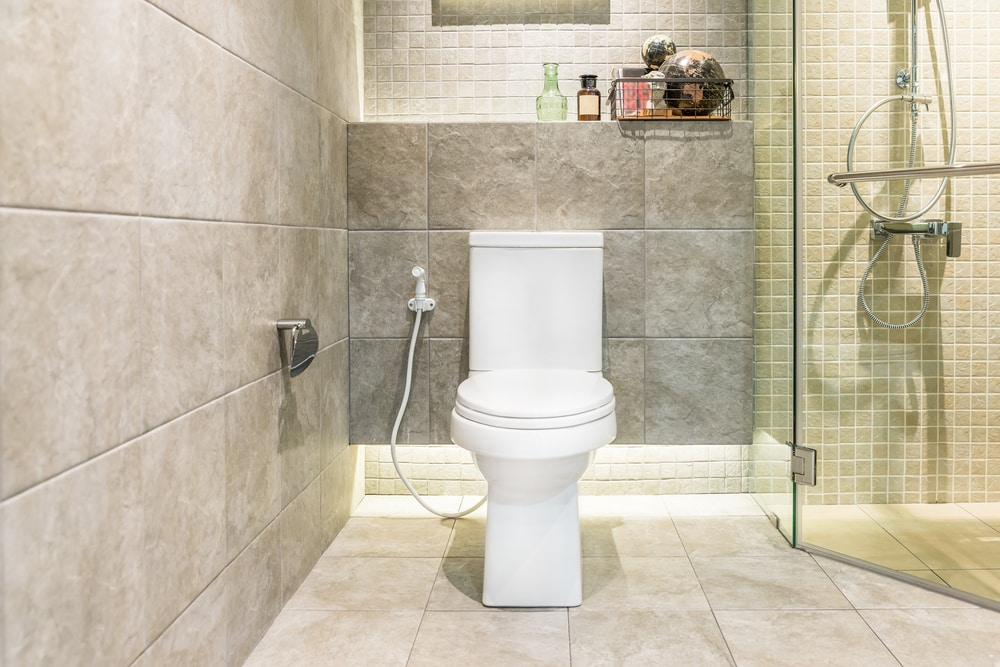 Two Piece Toilet Reviews Shopping Guide