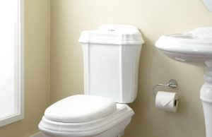 Two Piece Toilets