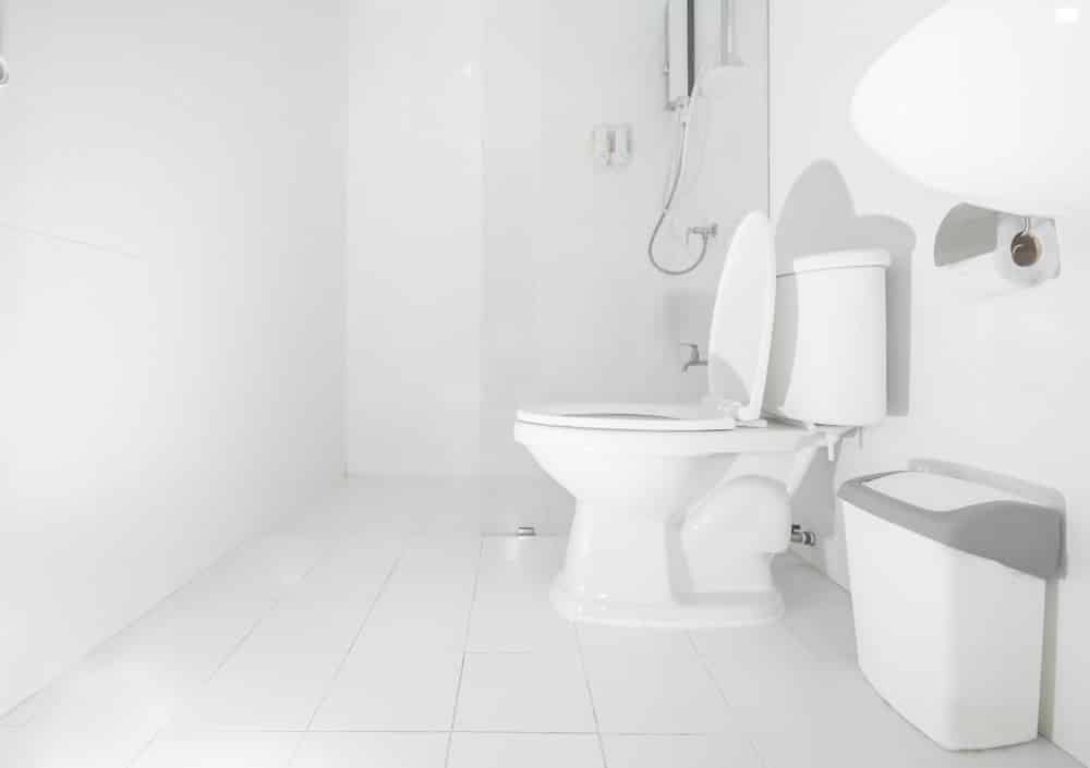 A Guide to Pressure Assisted Toilets