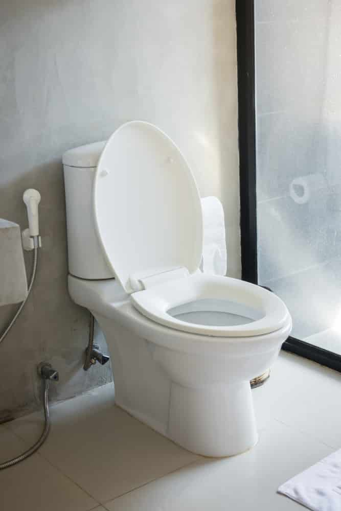 Astonishing 13 Best Comfort Height Toilets Of 2019 Reviews And Theyellowbook Wood Chair Design Ideas Theyellowbookinfo