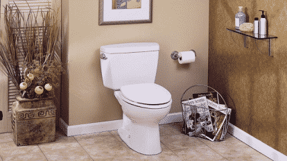 10-inch Rough-In Toilets Reviews
