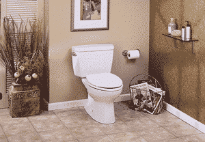 10-inch Rough-In Toilets