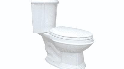 Renovator's Supply Elongated Corner Mount Dual Flush Toilet Review