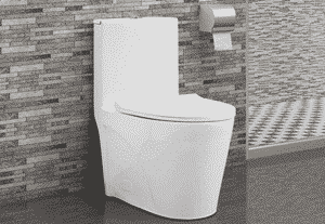 Swiss Madison SM-1T254 One-Piece Toilet Review
