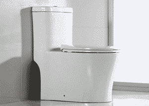 WoodBridge T-0033 Dual Flush Toilet Review