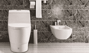 Woodbridge T-0018 / B-0735 Elongated Toilet Review