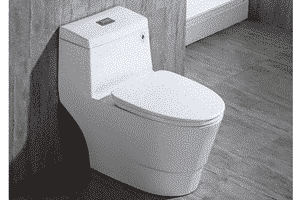 Woodbridge T-0019 Dual Flush Toilet Review