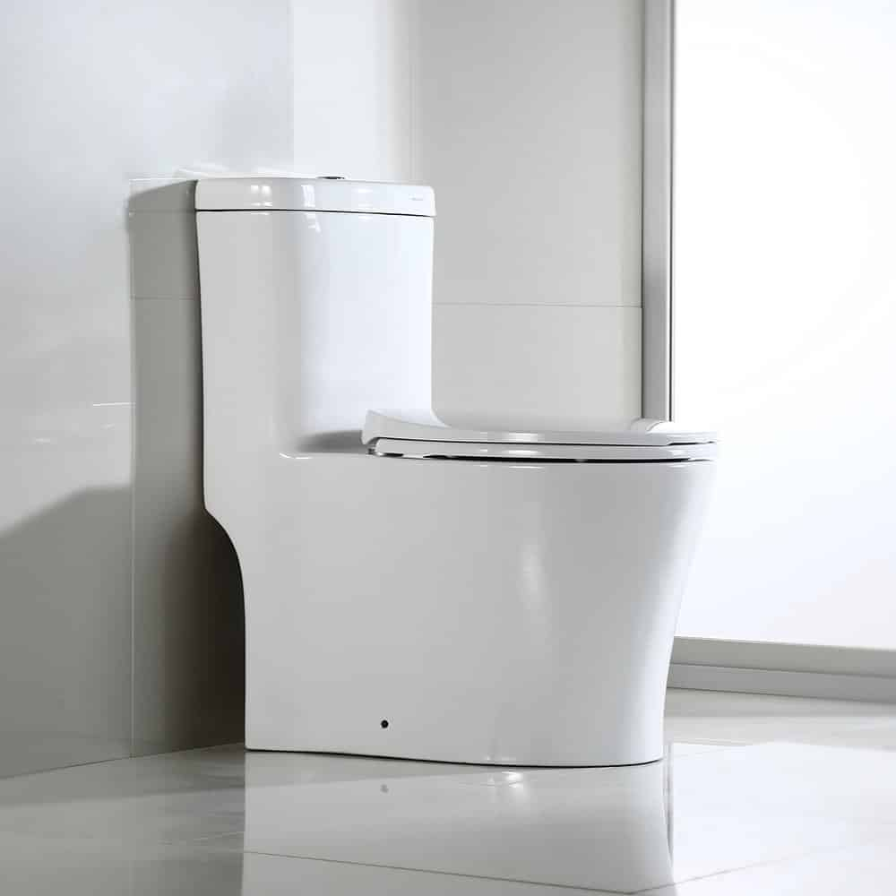 10 Best Toilets In 2019 Reviews And Comparison